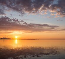 Golden Pink Toronto Sunrise by Georgia Mizuleva