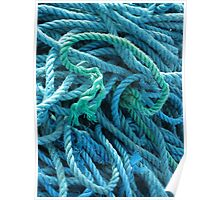 Blue Rope Poster