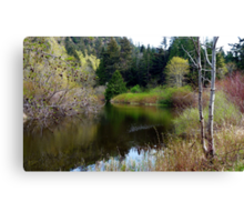 On San Juan Pond Two Canvas Print