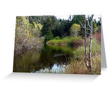 On San Juan Pond Two Greeting Card