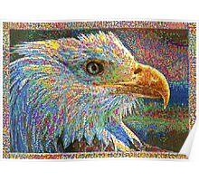 Colorful Bald Eagle Poster