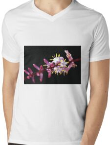 INDIAN PAINTBRUSH Mens V-Neck T-Shirt