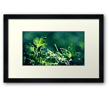 The earth... Framed Print
