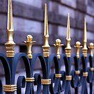 Fancy fence by Jenni Tanner