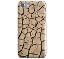 Earthen Puzzle iPhone Case/Skin