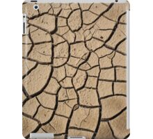 Earthen Puzzle iPad Case/Skin