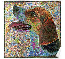 Colorful Beagle Poster