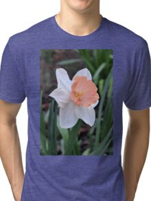 Orange and White Daffodil in the Garden Tri-blend T-Shirt