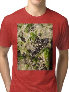 Mussels by the Sea Tri-blend T-Shirt