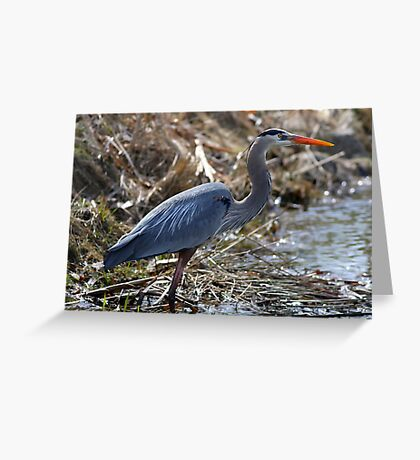 Blue In Dry Brush Greeting Card