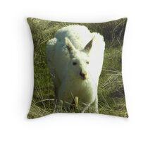 white kangaroo Throw Pillow