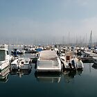 Boats at Trieste Marina by jojobob