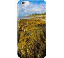 Seaweed on the Beach iPhone Case/Skin