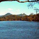 Brunswick River scene by georgieboy98