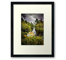 Jakes Falls Framed Print