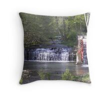 peace of country Throw Pillow