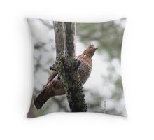 A Partridge in a ? tree Throw Pillow