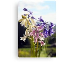 Tricolour Bells Canvas Print