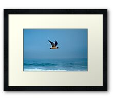 Fish Mission Framed Print