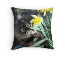 Can't See Me Now Throw Pillow
