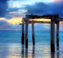 Hamelin Bay by kostasimage