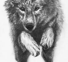 Running Wolf by WolfPathStudio