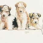 Fox Terrier Puppies by BarbBarcikKeith