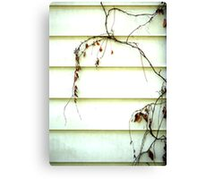 The Branches Canvas Print