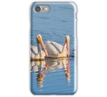 Pelican Quartet iPhone Case/Skin