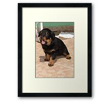 I Can See You Framed Print