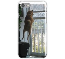 WhAt??? iPhone Case/Skin
