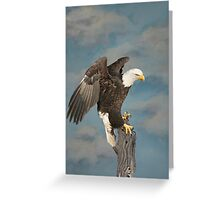 Sky Eagle Tribute - Collaberation Greeting Card