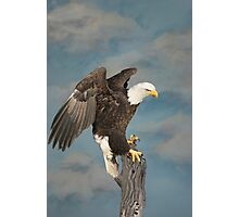 Sky Eagle Tribute - Collaberation Photographic Print