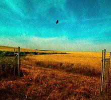 Fresh Air by Antonio Arcos aka fotonstudio