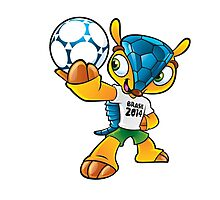 fuleco world cup Photographic Print