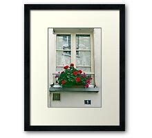 Windmill Window Framed Print