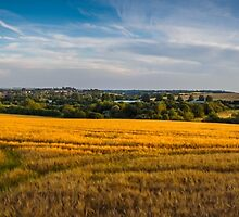 Hungerford Vista by mlphoto