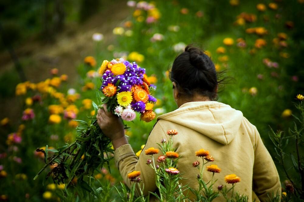 Flores by Sean Hallisey