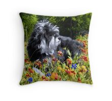 Cloey in the Flowers   Throw Pillow