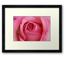 Coeur d'une rose...pretty in any language Framed Print