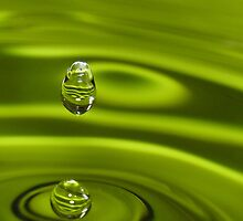 Green splash by Sara Hazeldine
