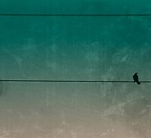 The Loner - Bird on a Wire by Eric Ziegler