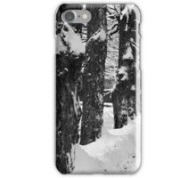 George Road Winter Monochrome iPhone Case/Skin