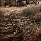 Old barn by R0dan