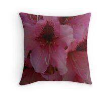 Spring Rhodie Throw Pillow