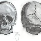 Skull - front and back by enelyawolfwood