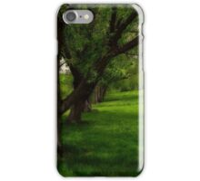 Under the shade trees iPhone Case/Skin