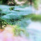 In The Garden   by Rick  Todaro