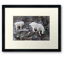 Rock Climbing Family Framed Print
