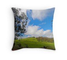 Marsden Swamp Road  Throw Pillow